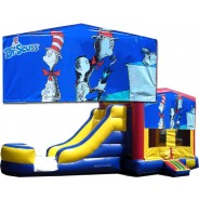 Cat in the hat Bounce Slide combo (Wet or Dry)
