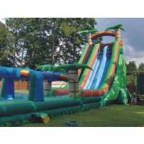 28ft Double Tropical Water Slide