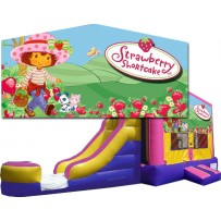 Strawberry Shortcake Bounce Slide combo (Wet or Dry)