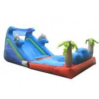 Dolphin Wet/Dry Slide Rental